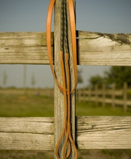 Rope Draw Reins