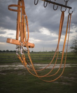 Weymouth Bridle with Miller Gag